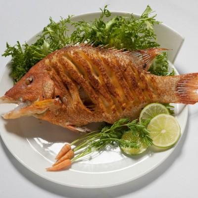 ... Restaurant Coral Gables: lobster stone crab claws shrimp paella fish